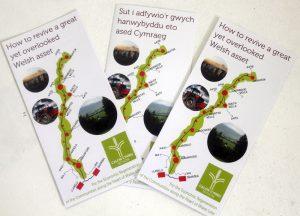 Calon Cymru Network leaflet