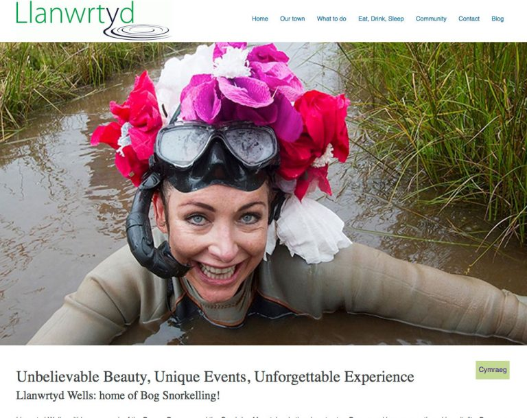 Llanwrtyd.com front page screengrab